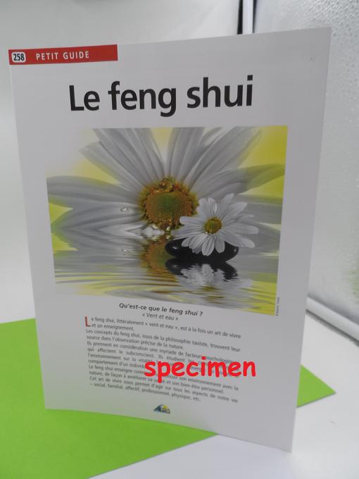 guide pratique sur le Feng Shui