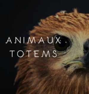 animal-totem-Omikao